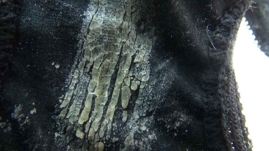 濃厚なマンカスが付着した黒パンティ
